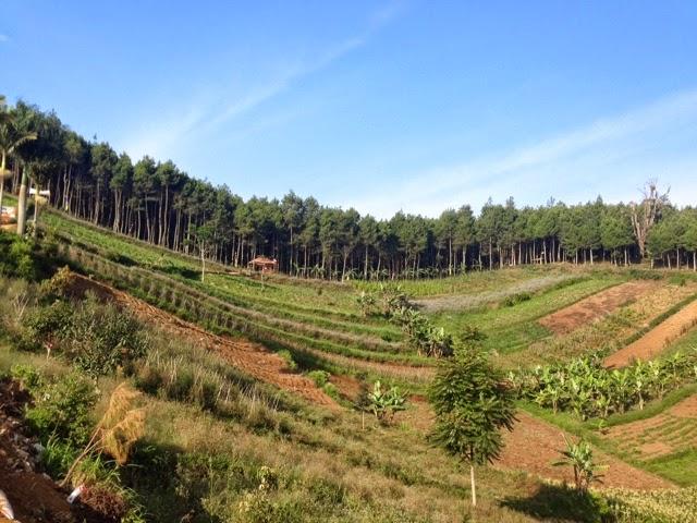 Tempat Wisata Bandung Cartil Wajib Dikunjungi Moko Nama Bukit Kawasan