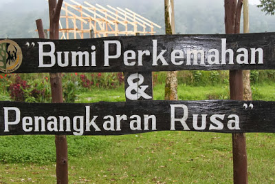 Bumi Perkemahan Ranca Upas Paket Bandung Ciwidey Yoshiewafa Blogspot Wisata
