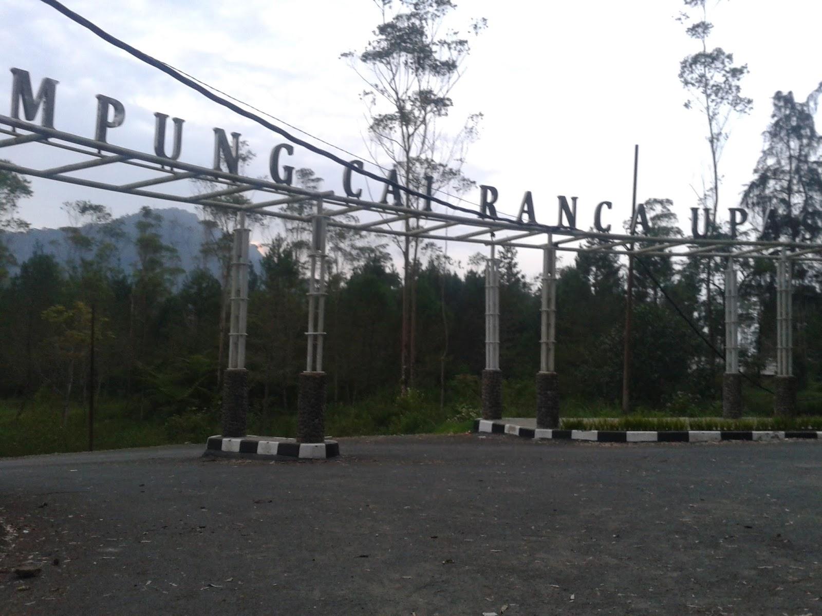 Family Camp Ranca Upas Ciwidey Journey Kampung Cai Nama Populer
