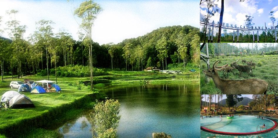 Kampung Cai Rancaupas Destinasi Wisata Alam Terbuka Bandung Ciwidey Ranca