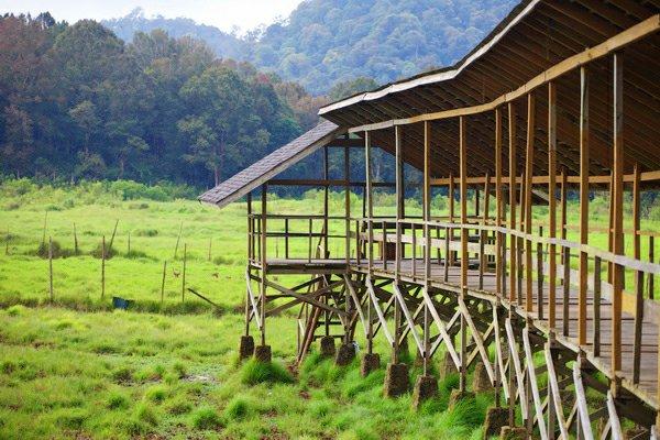 Lokasi Harga Tiket Masuk Kampung Cai Ranca Upas Spot Wisata