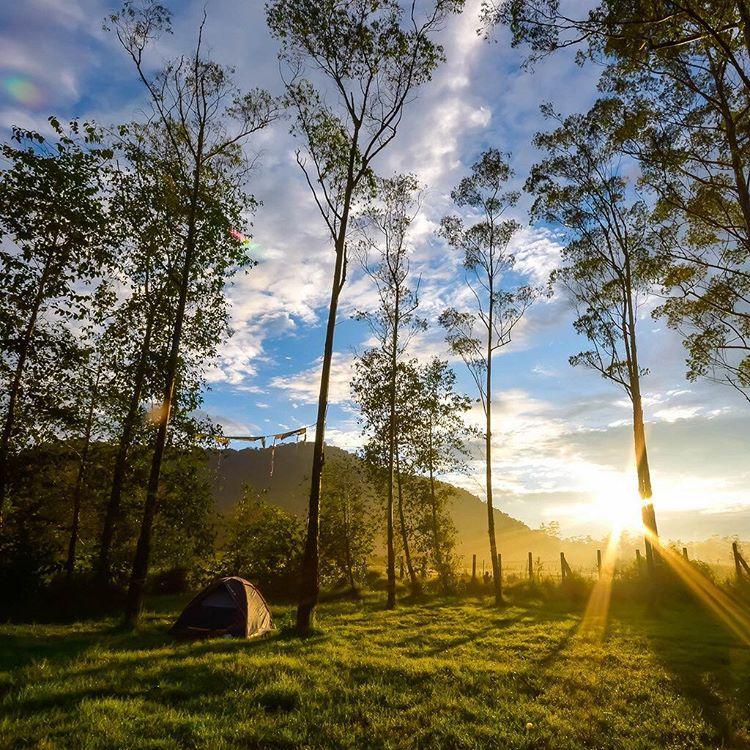 Menikmati Wisata Alam Ranca Upas Katalog Tempat Liburan Bandung Kab