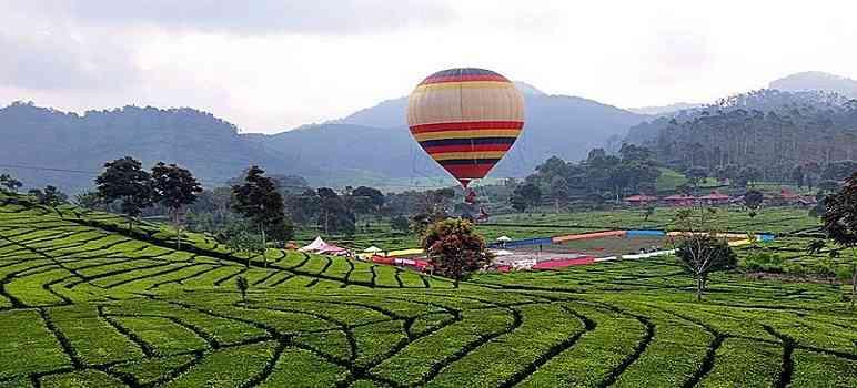 Wisata Ciwidey 5 Spektakuler Bandung Ranca Upas Kab