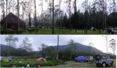 Wisata Kemah Penangkaran Rusa Ranca Upas Ciwidey Bandung Selatan Easy