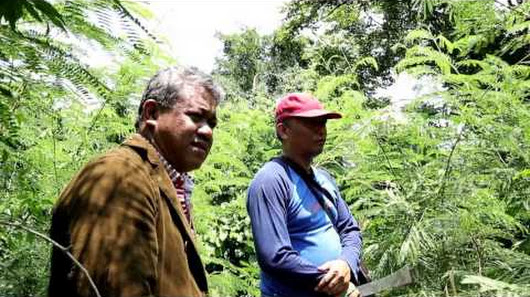 Gerbang Pulau Madura Google Mengunjungi 5 20 Bunker Peninggalan Jepang