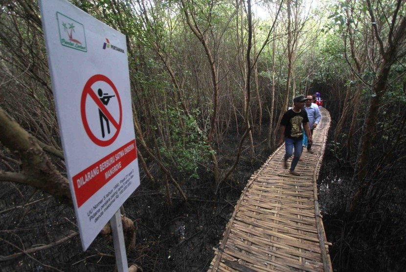 Belajar Kearifan Lokal Masyarakat Desa Karangsong Republika Pengunjung Menikmati Suasana