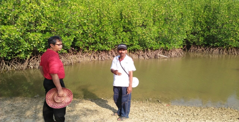 Cerita Mantan Tki Sukses Kelola Mangrove Labuhan Berita Madura Kab