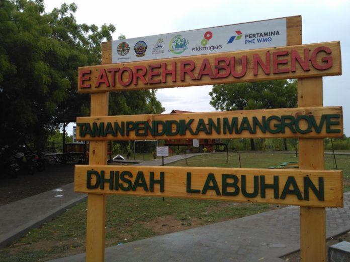 Desa Labuhan Kampung Iklim Pertama Madura Petrominer Bangkalan Mangrove Kab
