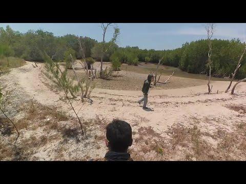Hutan Mangrove Labuhan Pantai Kera Nepa Sampang Eduwisata Sepulu Bangkalan