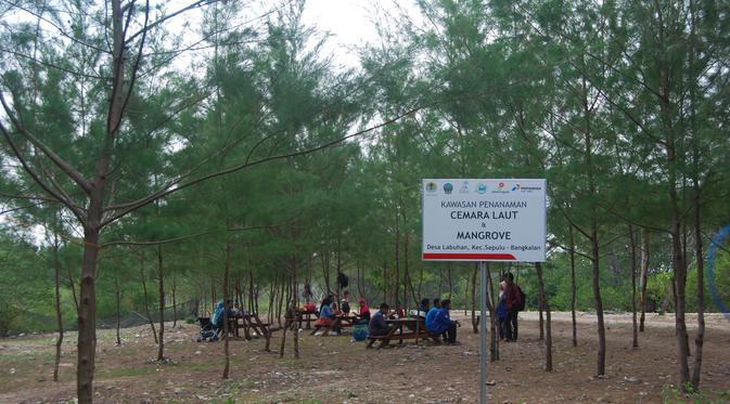 Keindahan Taman Wisata Pendidikan Mangrove Bangkalan Regional Sepuluh Labuhan Kab
