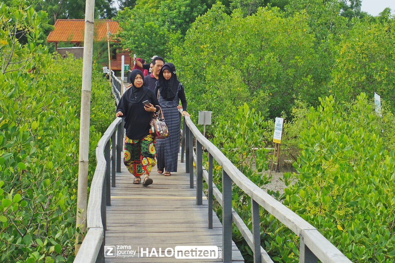 Keren Hutan Mangrove Cantik Berada Labuhan Sepuluh Madura Setelah Kab