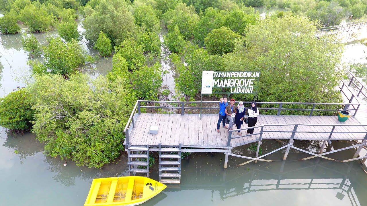 Labuhan Mangrove Education Park Bangkalan Wisata Edukatif Kab