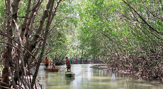 Mahasiswa Utm Belajar Pemberdayaan Masyarakat Taman Pendidikan Mangrove Desa Labuhan