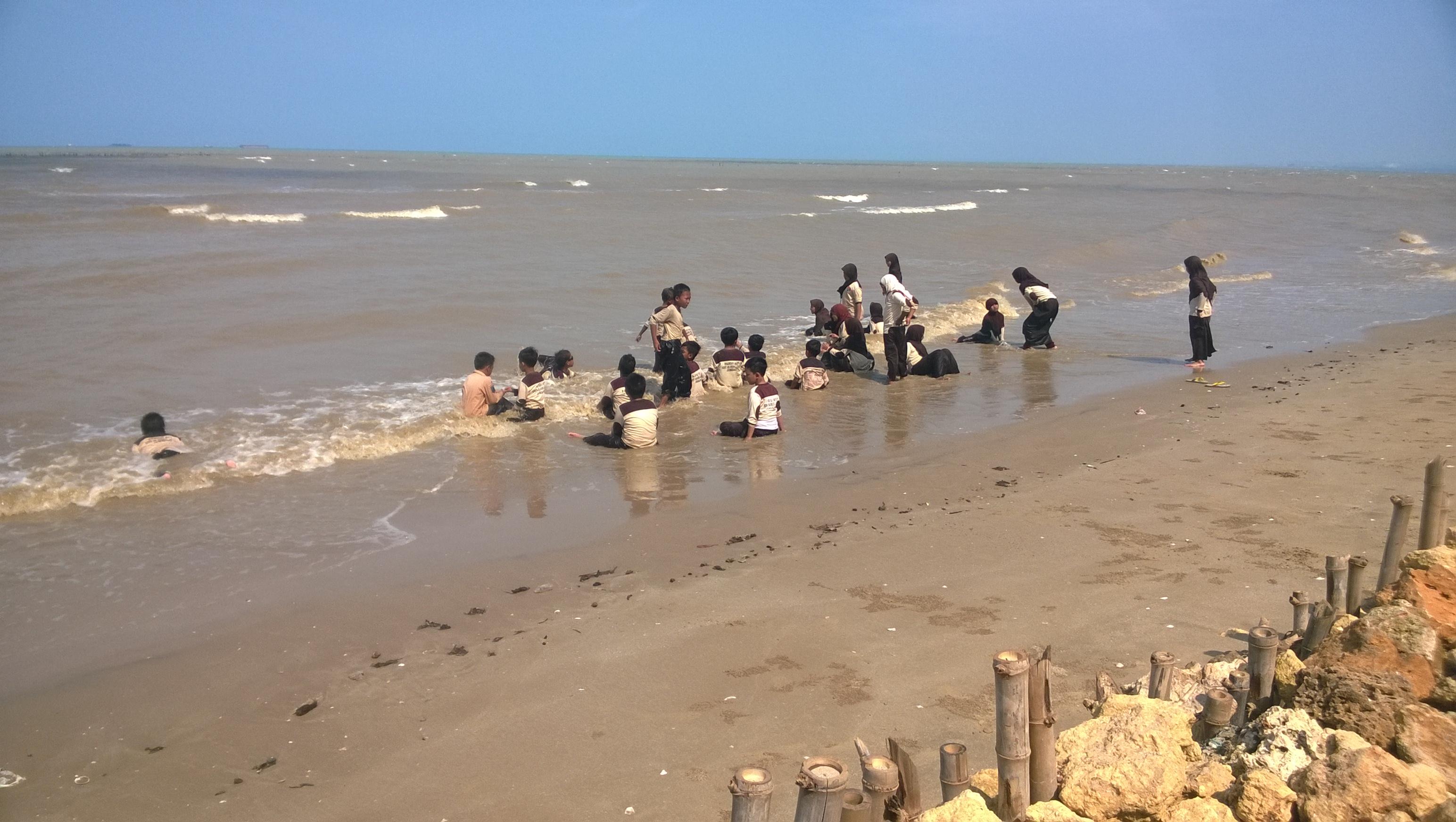 Mangrove Center Tuban Acara Dilanjutkan Tur Melihat Langsung Ekosistem Menjadi