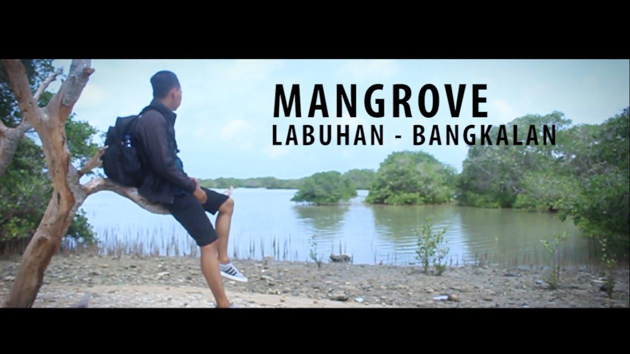 Mangrove Labuhan Bangkalan Madura Youtube Kab
