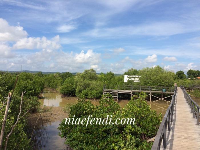 Pesona Taman Pendidikan Mangrove Labuhan Nia Efendi Kab Bangkalan