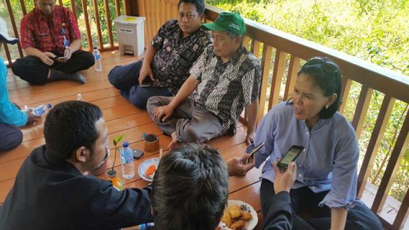 Phe Wmo Berharap Muncul Duta Mangrove Madura Bangkalan Kabarbisnis Berkembangnya