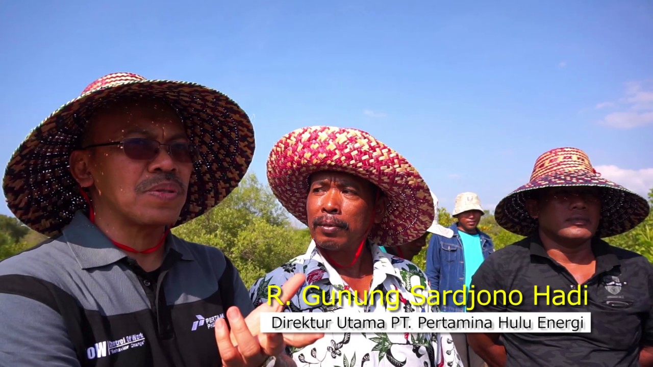 Profil Taman Pendidikan Mangrove Labuhan 2017 Youtube Kab Bangkalan