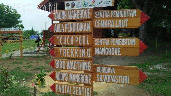 Taman Pendidikan Mangrove Bangkalan Makin Ramai Pengunjung Surya Labuhan Kab
