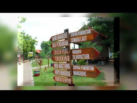 Taman Pendidikan Mangrove Desa Labuhan Kec Sepulu Kab Bangkalan Madura