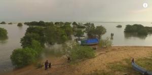 Taman Pendidikan Mangrove Labuhan Bangkalan Madura Jawa Timur Labuan Https