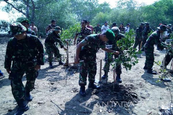 Warga Bangkalan Kembangkan Taman Pendidikan Mangrove Antara News Labuhan Kab