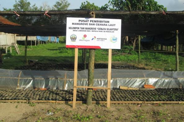 Website Resmi Pemerintah Kabupaten Bangkalan Berkembangnya Taman Pendidikan Mangrove Desa