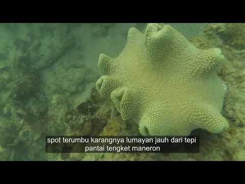 Download Mp3 Snorkeling Pantai Maneron Sepulu Kab Bangkalan Madura Lepas