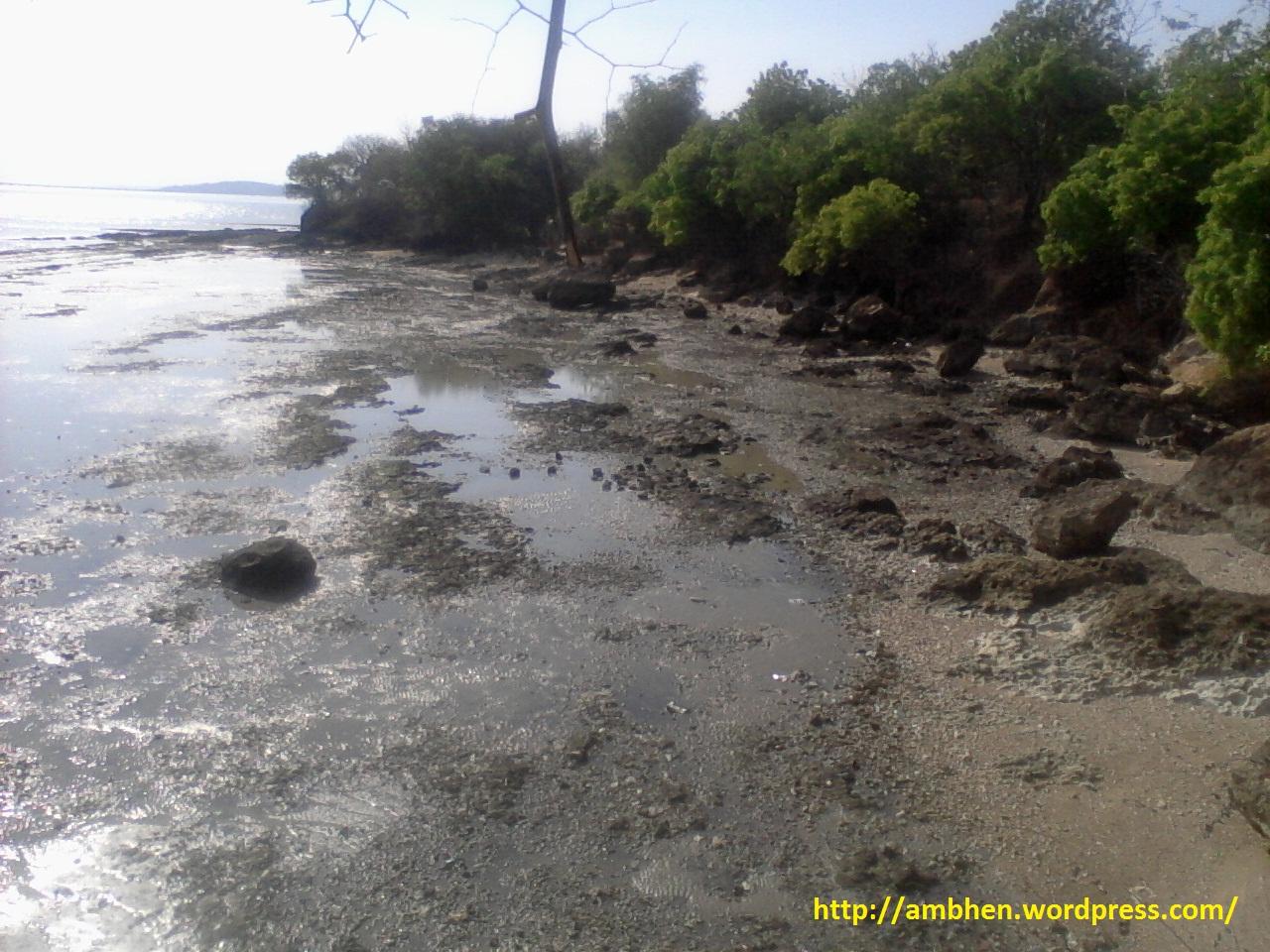 Bangkalan Pantai Rongkang Kab