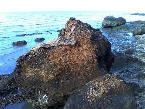 Pantai Rongkang Moh Latifur Rohman Tempat Wisata Bangkalan Madura Kab