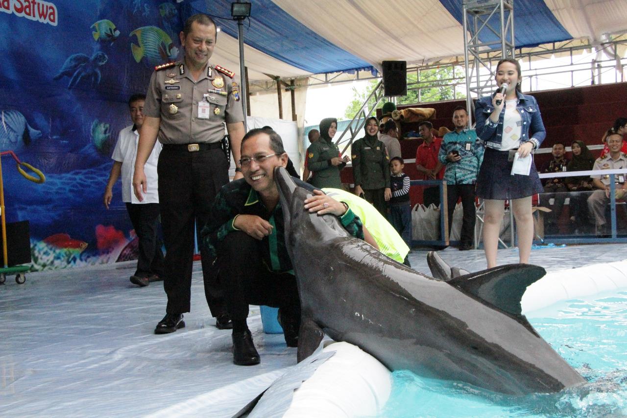 Atraksi Ikan Lumba Taman Kamboja Makna News Hiburan Wakil Walikota