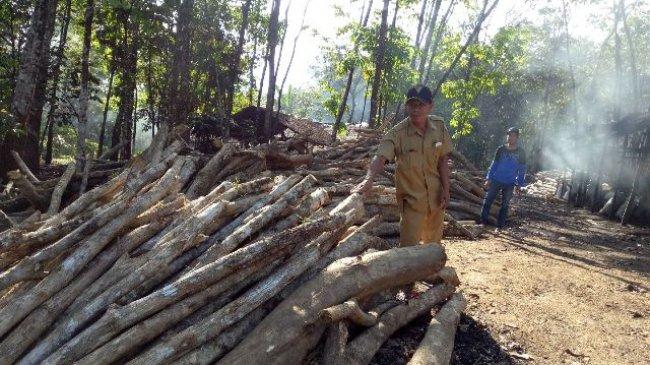 Kalimantan Selatan Banjarmasin Post Warga Tapuk Lebih Semangat Bikin Arang