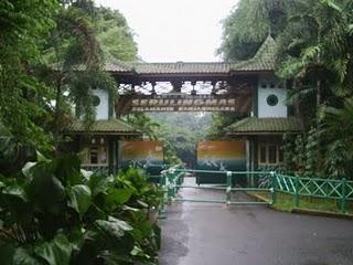 218 Obyek Wisata Taman Rekreasi Margasatwa Serulingmas Bisa Dilihat Pemandangan