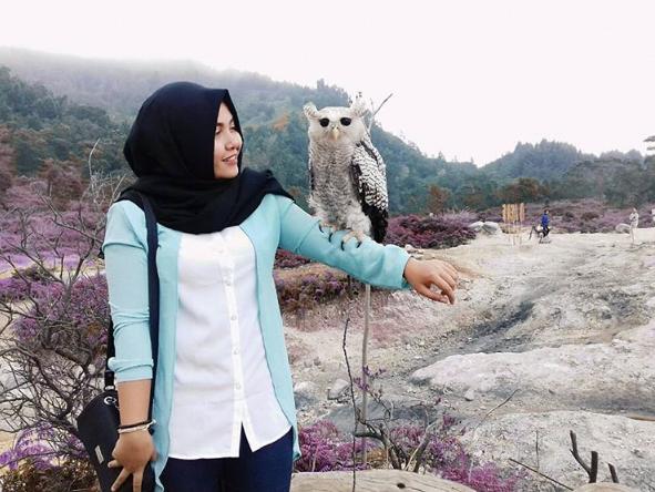 24 Tempat Wisata Terlengkap Banjarnegara Jawa Tengah Instagram Shofianipertiwi Anglir