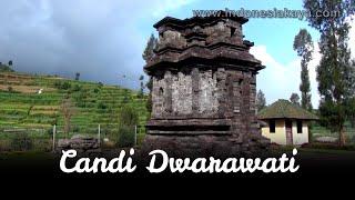 Candi Dwarawati Menyendiri Antara Ladang Kentang Dieng Kab Banjarnegara