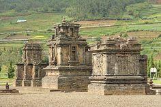 Dieng Kawasan Dataran Tinggi Jawa Tengah Masuk Komplek Candi Arjuna