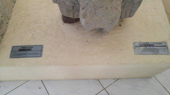 Museum Kailasa Picture Dieng Kaliasa Kulon Kab Banjarnegara