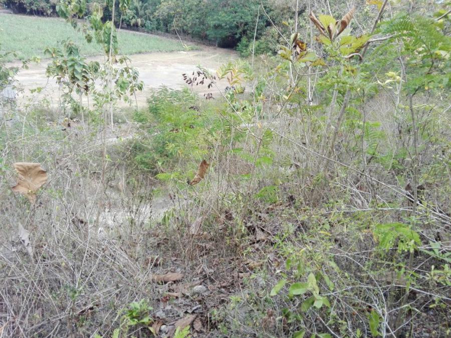Tanah Dijual Murah Bantul 300m Jalan Pajangan Dekat Goa Selarong