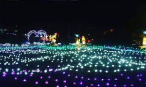 Festival Lampion Pasar Seni Gabusan Bantul Dinas Pariwisata Diy Pusat