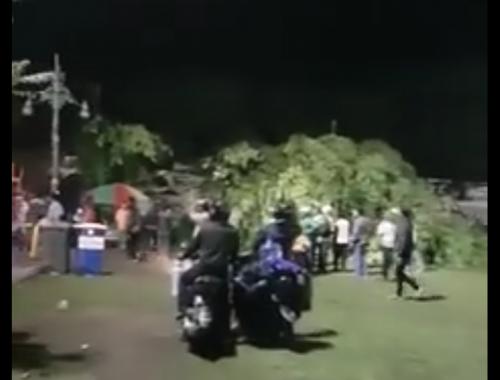 Pohon Beringin Alun Purwokerto Roboh Pertanda Banyumasnews Tumbangnya Raksasa Berumur