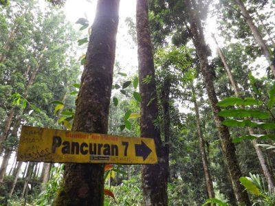 10 Gambar Wisata Baturaden Purwokerto Harga Tiket Masuk Lokasi Pancuran