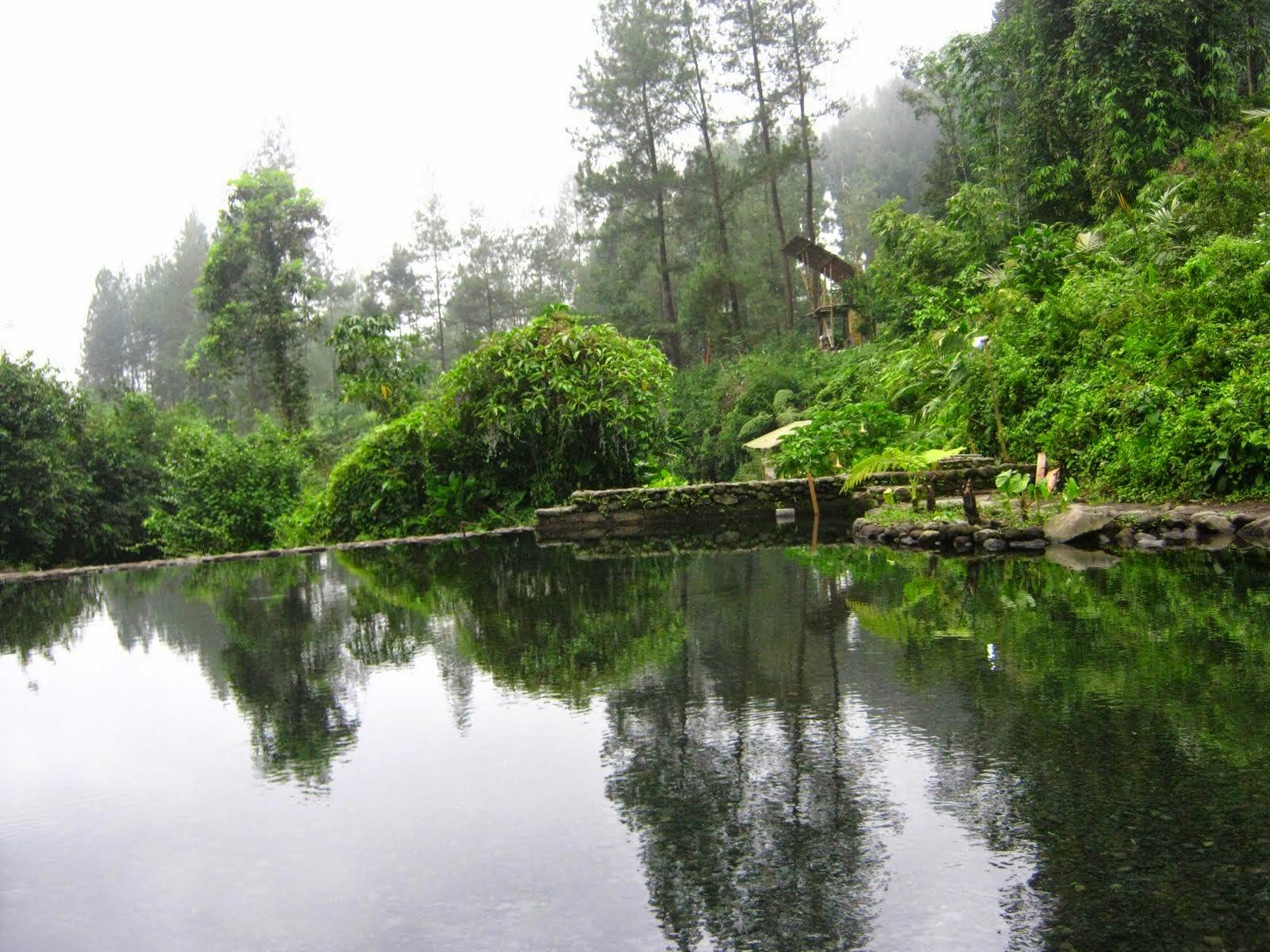 Anggun Trisna Reflective Essay Outbond Baturraden Adventure Berikut Foto Forest