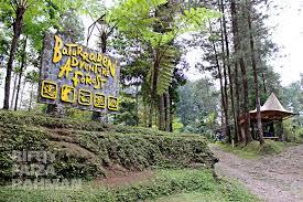 Baturaden Adventure Forest Pedia Trip 3 Baturraden Baf Kab Banyumas