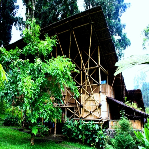 Baturraden Adventure Forest Wisata Alam Terbaik Purwokerto Lihat Menarik Baf