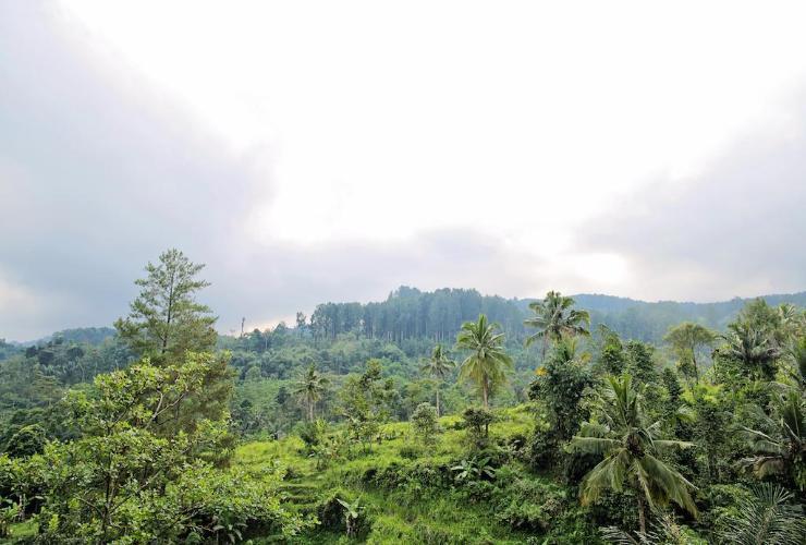 Grand Kanaya Baturraden Banyumas Regency Rates Traveloka Building View Adventure