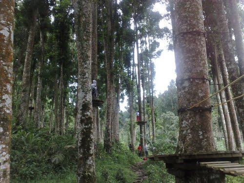 Guide Dukuhsura Provinsi Jawa Tengah Indonesia Tripmondo Pictures Baturaden Adventure