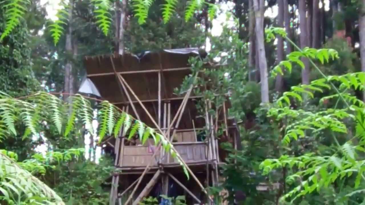 Jalan Baturaden Adventure Forest Youtube Baturraden Baf Kab Banyumas