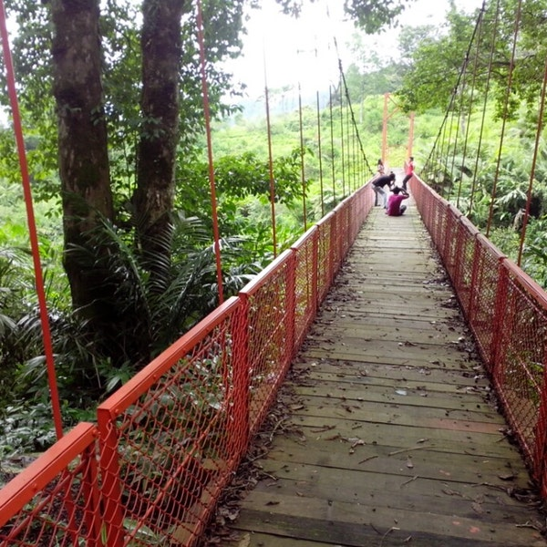 Photos Baturaden Adventure Forest Baf Photo Baldy P 1 Baturraden