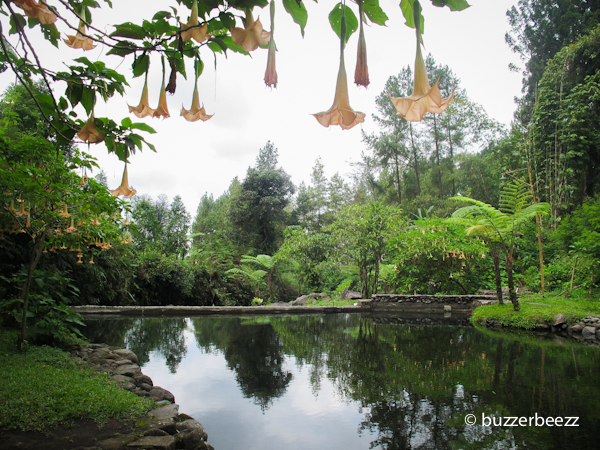Visit Jawa Tengah Trip Baturraden Negeri Dongeng Keren 20150822 Img