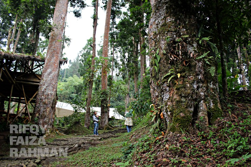 Visitjateng Baturraden Air Menghidupkan 4 2 Papan Pelangi Adventure Forest